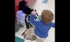 Boy Fights Spider