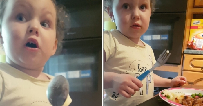 Hilarious Video Shows Toddlers Reaction After Learning Where Sausages Come From