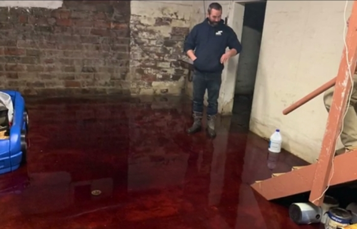 Family's Basement Turns Into Murder Scene After Meat Locker Explodes