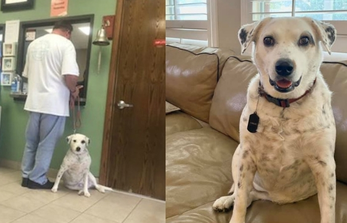 Ungrateful Man Returns Dog to Shelter for Being 'Too Affectionate'