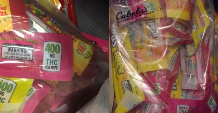 THC-Laced Halloween Candy Causes Concern for Police, Parents