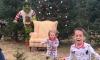 Grinch Christmas Photos