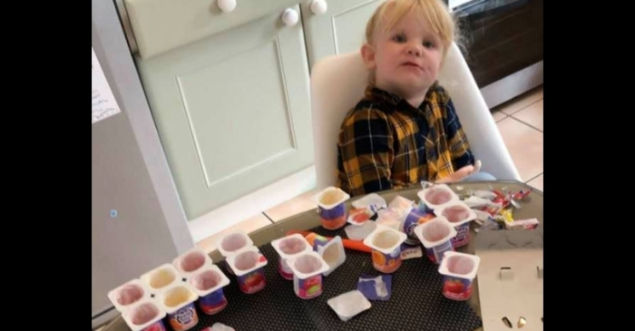 3-Year-Old DEVOURS 18 Yogurts After Dad Leaves The Room For 10 Minutes