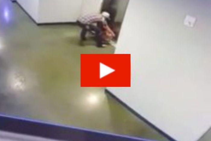 Man Heroically Rescues Dog After Leash Gets Caught in Elevator Doors