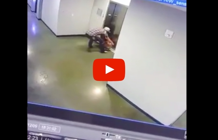 Man Rescues Dog After Leash Gets Caught in Elevator Doors