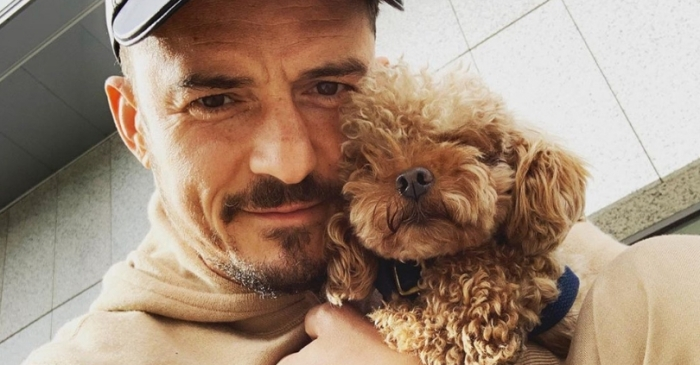Orlando Bloom Made An Ornament Out of His Dead Dog's Penis, and We Have So Many Questions