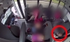 School Bus Video Shows 5-Year-Old Attacked by Other Kids