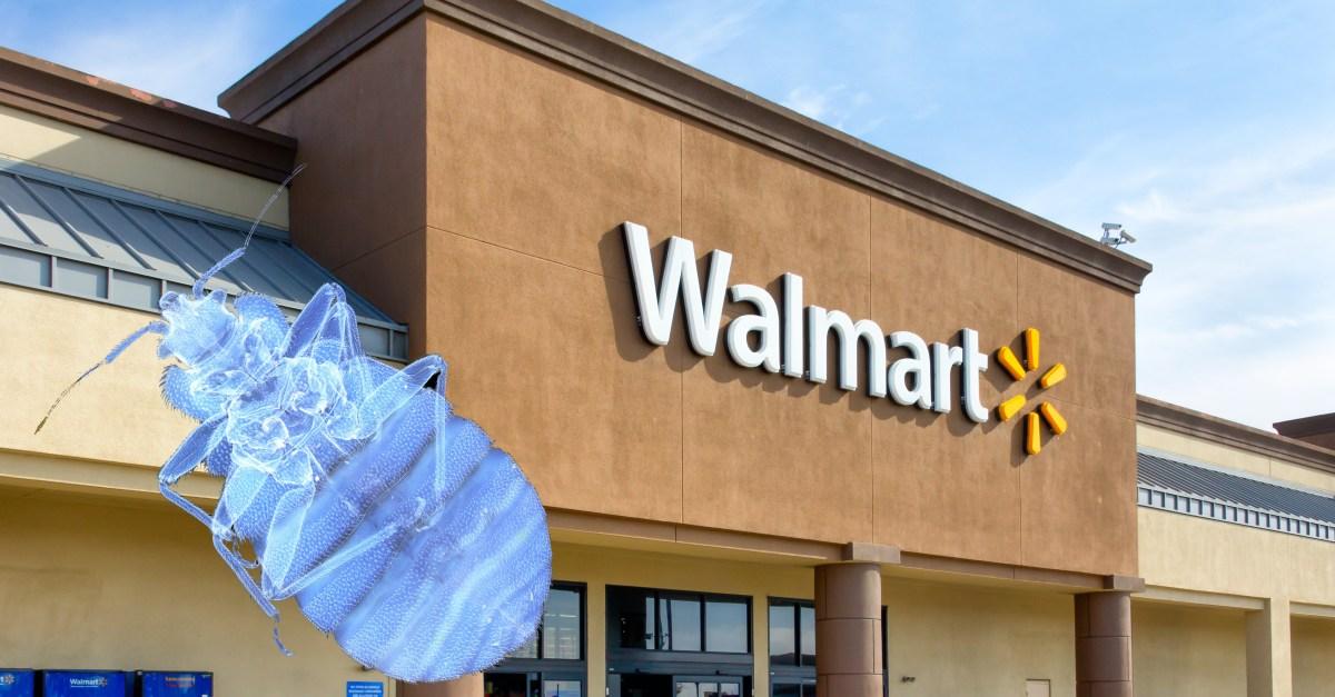 Walmart Bedbugs