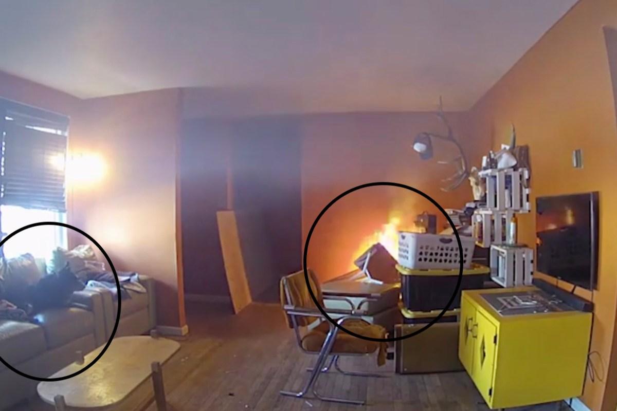 Dog Start House Fire