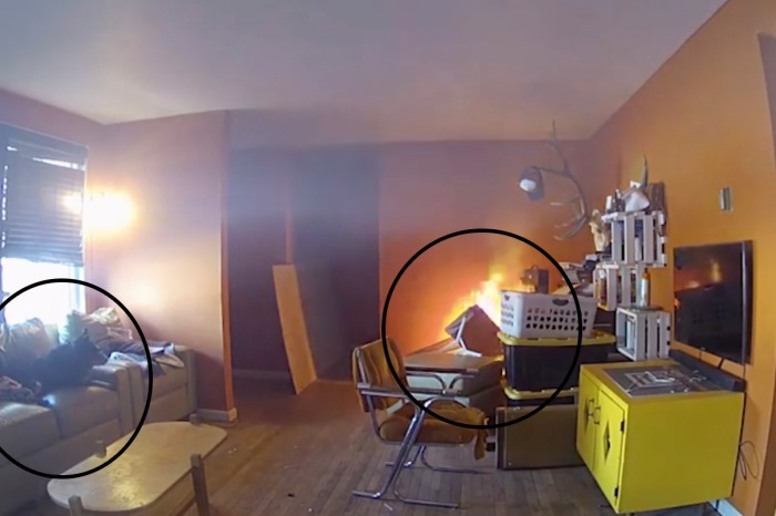 Hilarious Video Shows Mischievous Dog Start Huge House Fire, Watch it Burn