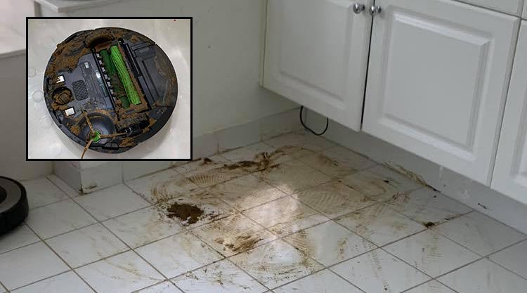Roomba Dog Poop