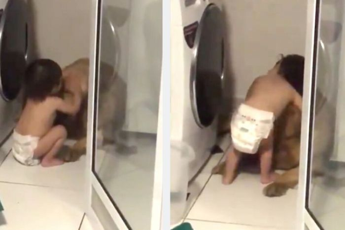 Adorable Toddler Comforts Frightened Pup During Thunderstorm