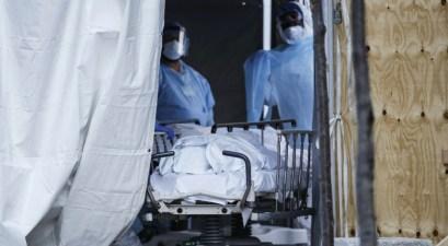 American Coronavirus Death Toll