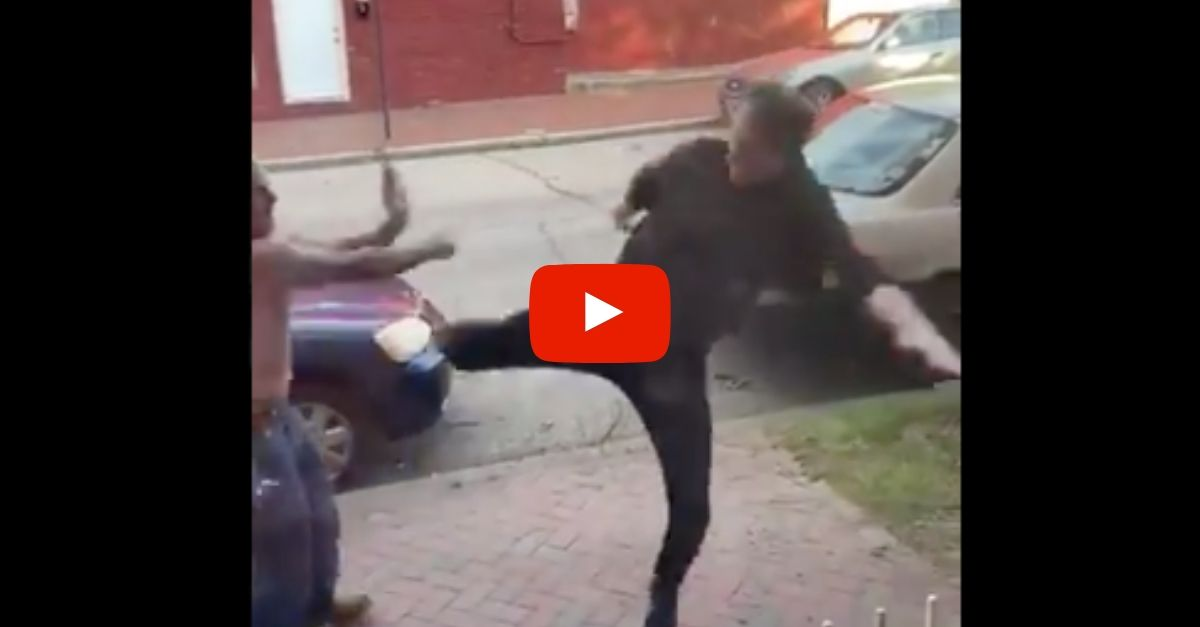 Jeff Goldblum Lookalike Gets Into Epic Viral Street Fight