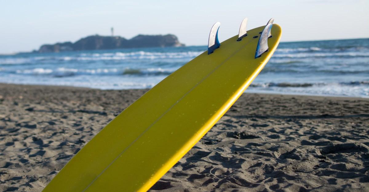 Shark Attack California