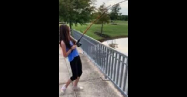 Gator Speeds Across Pond to Rip Fish Off Girl's Line