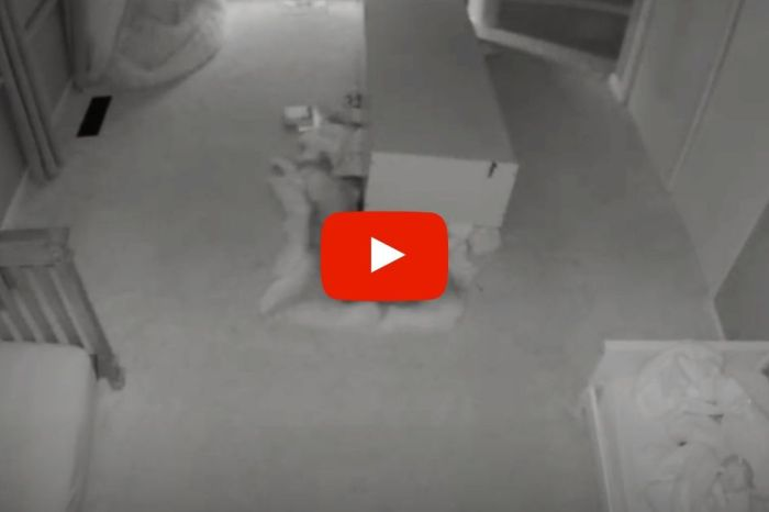 Horrifying Baby-Cam Video Shows Bookcase Toppling onto Toddler Twins