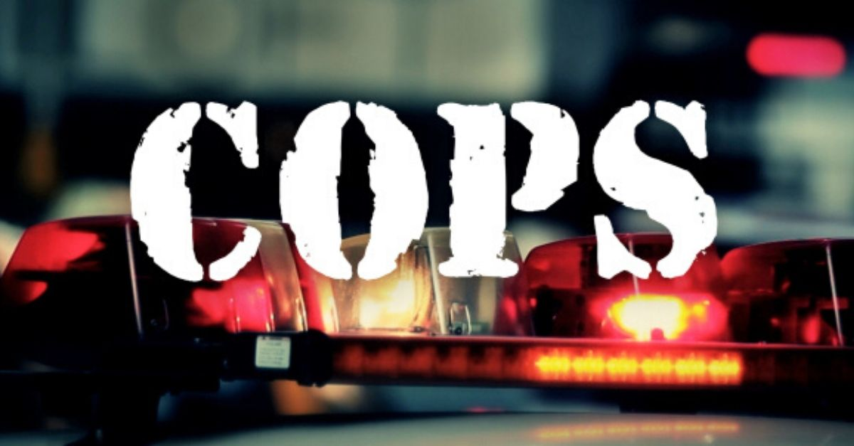 'Cops' Canceled Amid Protests Against Police Brutality