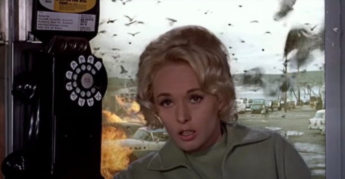 How Actress Tippi Hedren went from 'The Birds' to Living with Lions