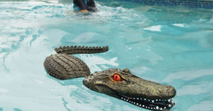 Scare Unwanted Pool Guests With This Lifelike Alligator Head