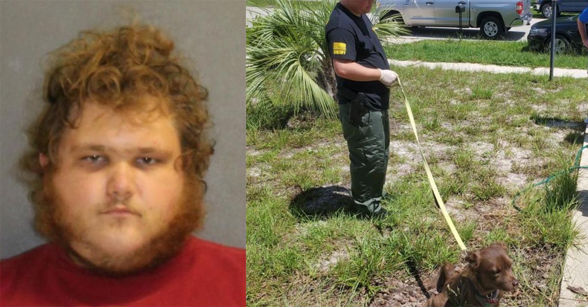 Florida Man Bestiality Child Porn