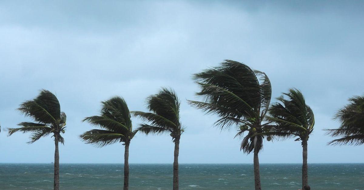 Hurricane Laura Forecast To Hit U.S. Gulf Coast as Major Hurricane