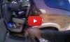 Texas Cop Saves Baby Hot Car