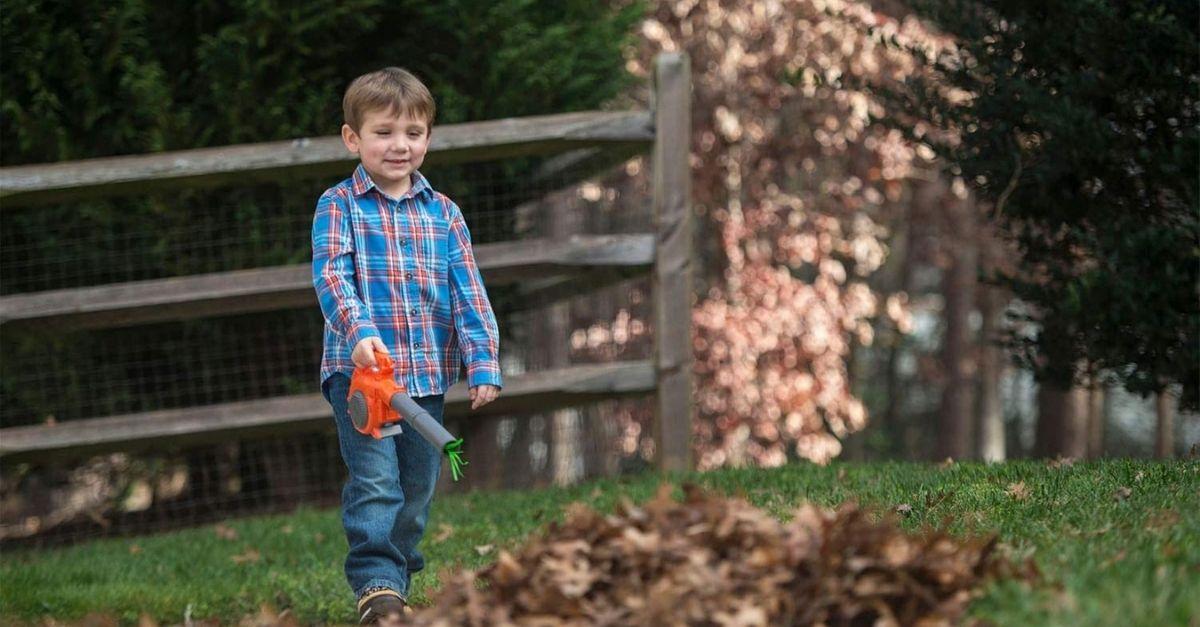 Kids leaf blower