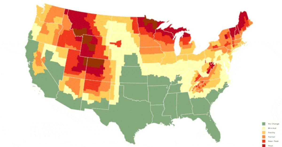 This Map Predicts When Leaves Will Change Color in Your Area This Fall