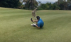 Kangaroo Beats Up Golfer