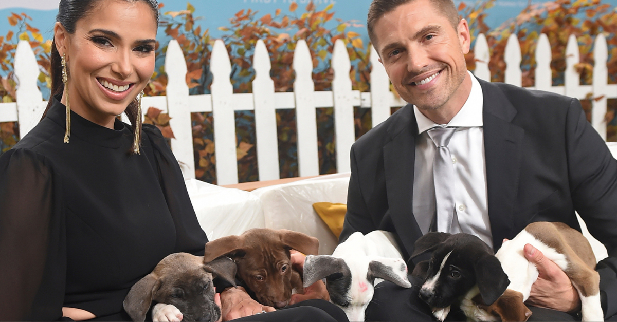 https://newsroom.ap.org/detail/2019AmericanHumaneHeroDogAwards/a4f6620f23854bc789d960b9768a7121/photo?Query=hallmark%20AND%20channel&mediaType=photo&sortBy=arrivaldatetime:desc&dateRange=Anytime&totalCount=214&currentItemNo=10