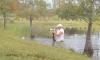 Florida Man vs Gator