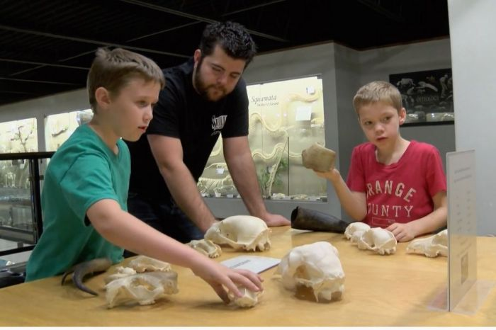 Why You Should Visit The Largest Museum of Osteology