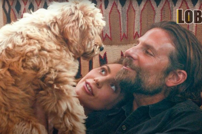 Bradley Cooper Cast His Own Dog in 'A Star is Born!'