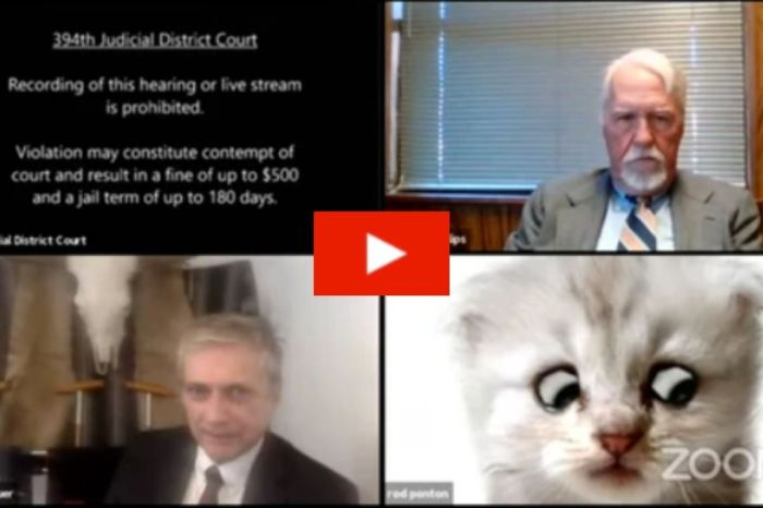 Lawyer Hilariously Trapped in Cat Filter During Zoom Trial