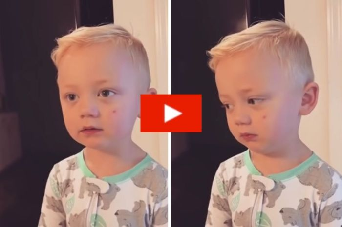 "3-Year-Old Gives Unexpected Response After Mom ""Ate All His Candy"""