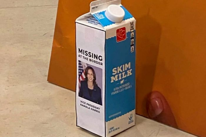 House Republicans Troll Kamala Harris With 'Missing at Border' Milk Carton