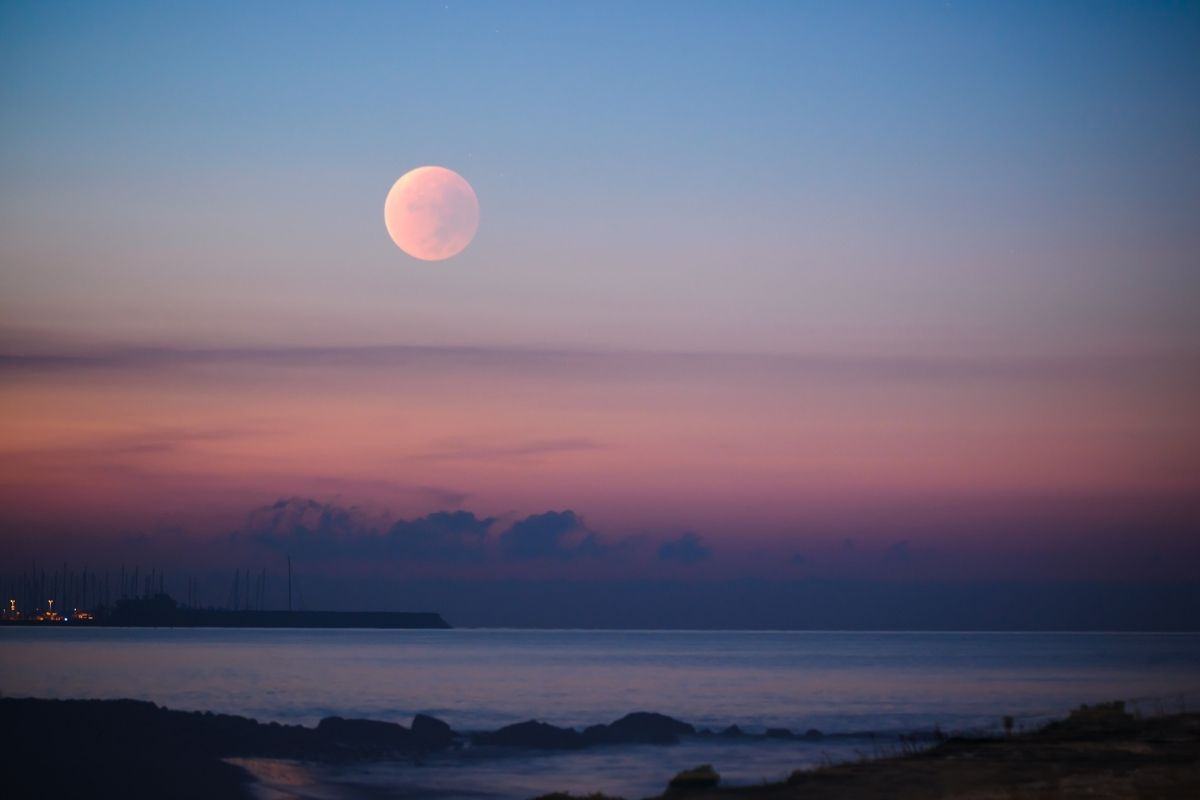 A Rare Pink Moon Will Lights Up The Sky on April 26!