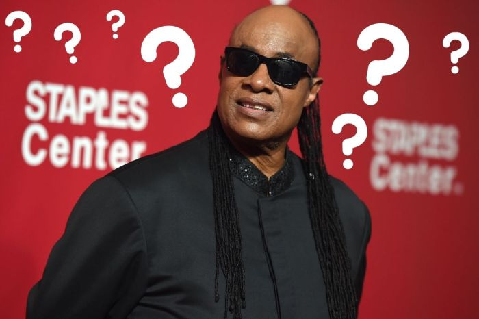 Conspiracy Theorists Say Stevie Wonder Is Not Blind
