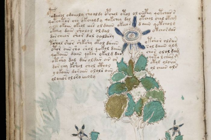 No One Can Crack the Mysterious Medieval Code of the Voynich Manuscript