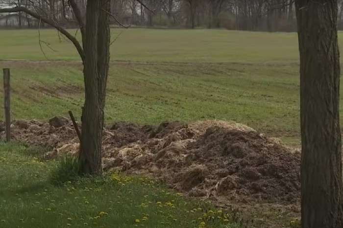 Man Takes Revenge By Building Cow Poop Wall After Property Line Dispute With Neighbor
